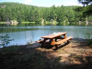 7_lakeandpicnictable